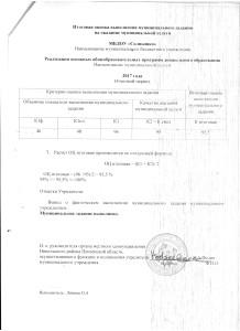 Оценка выполнения м .з. за 2017г (1)